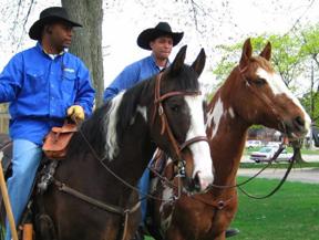 Renaissance Equestrian Society